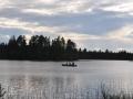 zweden 2011 178
